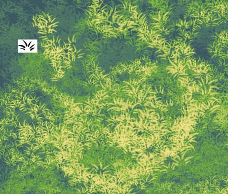 葉っぱブラシ